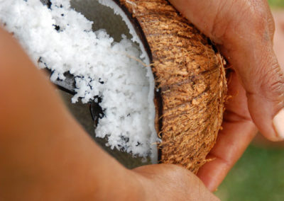 07-coconut-story-6